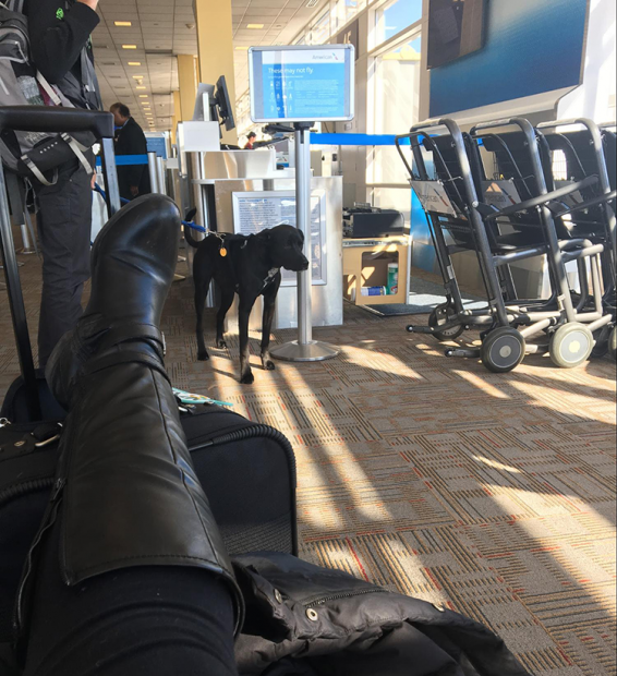TWC intern at the airport
